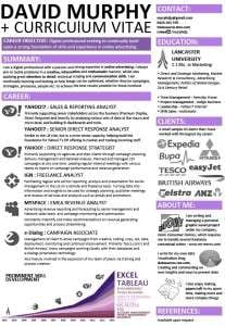 Infographic CV preview